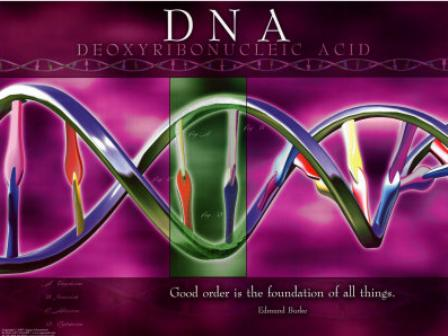 Scientists Unwittingly Unravel the Mystery of Iniquity   Tribulation-
